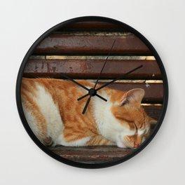 Sleepy Cat Wall Clock