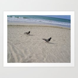Bird bird Art Print