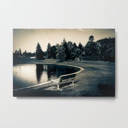 Newcastle, NSW, Australia The Lonely Pond Metal Print