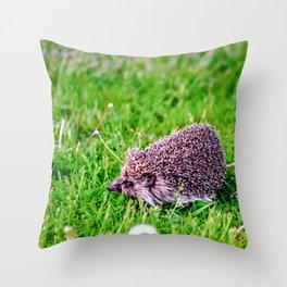 Dandelion Run Throw Pillow