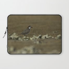 Red-Capped Plover Laptop Sleeve