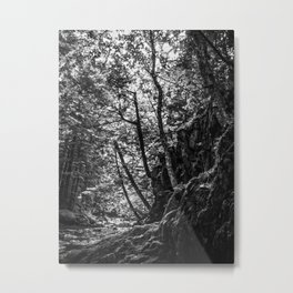 Missisquoi River in Vermont - 1 BW Metal Print