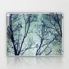 Wintergreen Twilight Laptop & iPad Skin