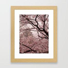 Pink Himeji Dream Framed Art Print