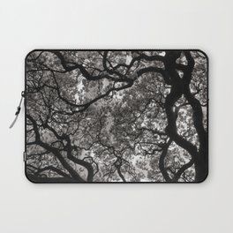 Magnolia Trees in Blossom 02 Laptop Sleeve