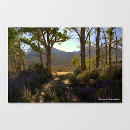 Natural Lupin Garden Canvas Print