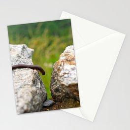 millipede photo Stationery Cards