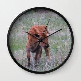 Baby buffalo calf Wall Clock