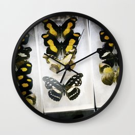 Butterfly Case - Color Wall Clock
