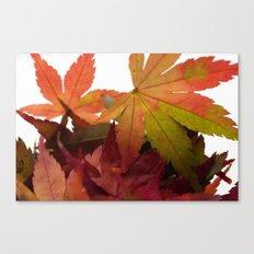 Autumn Colored Leaves #2 #foliage #decor #art #society6 Canvas Print