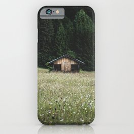 Alpine symmetry iPhone Case
