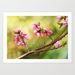 Spring and pink flowers on a branch Art Print
