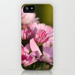Pink marguerite iPhone Case