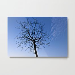 Hey I'm Not Alone Metal Print