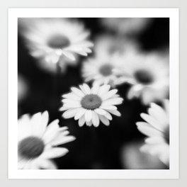 Botanica Obscura #10 Art Print