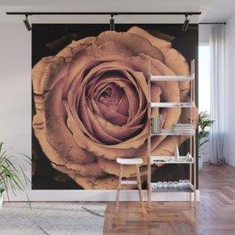 Vintage Rose,peach Wall Mural