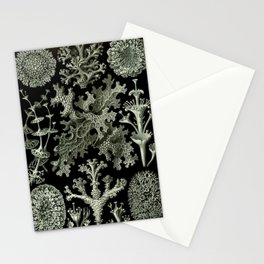 Naturalist Lichen Stationery Cards
