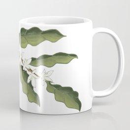 Coffea Coffee Mug
