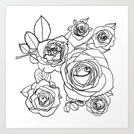 Feminine and Romantic Rose Pattern Line Work Illustration Kunstdrucke