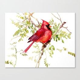 Northern Cardinal, cardinal bird lover gift Canvas Print