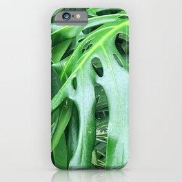 Madcap Marvelous Tropical Jungle Palm Leaves iPhone Case