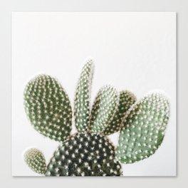 Good Morning Cactus Canvas Print