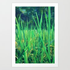 Grasslands in the Himalayan Foothills Art Print