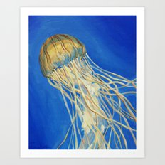Northern Sea Nettle Art Print