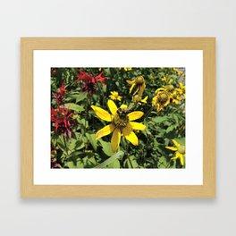 Mt. Mitchell Bee Framed Art Print