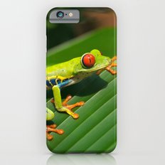 Green Tree Frog Red-Eyed iPhone 6s Slim Case