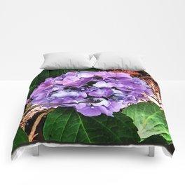 'Hello Hydrangea' Comforters