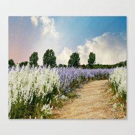 Coloured Landscape Canvas Print
