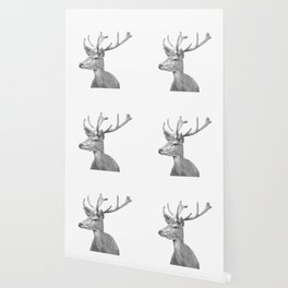 Black and white deer animal portrait Wallpaper