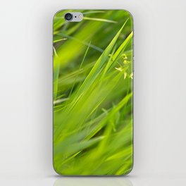 Shallow Blades of Grass iPhone Skin