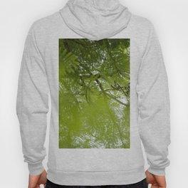 trees springtime Hoody