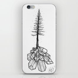 Crystallized Nature iPhone Skin