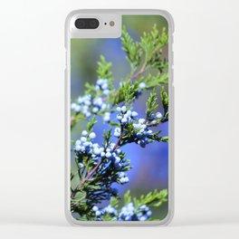 Light Blue Juniper Berries Clear iPhone Case