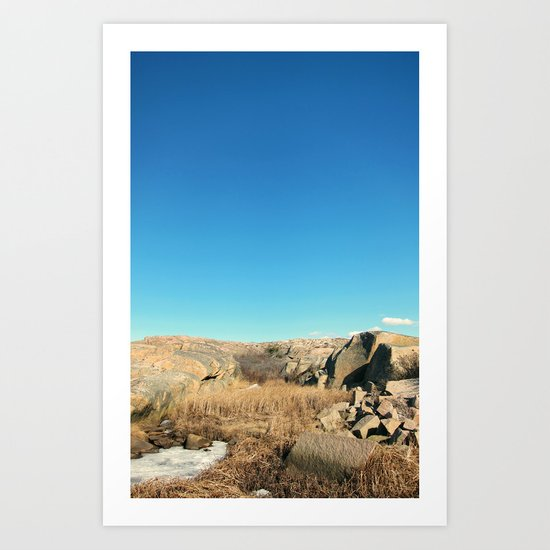 Raw Nature Art Print