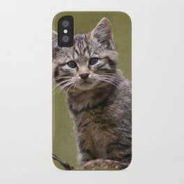 Scottish Wildcat Kitten iPhone Case