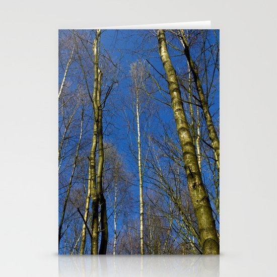 The Still forest Stationery Cards