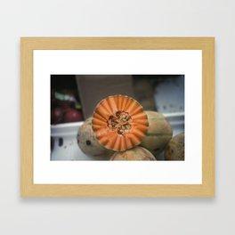 A Melon! Framed Art Print