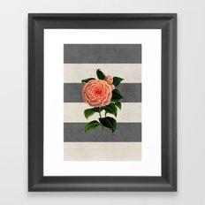 botanical stripes - camellia Framed Art Print