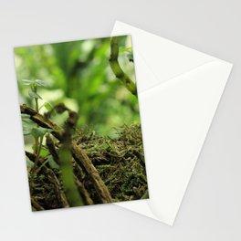 Hidden Jewel Stationery Cards