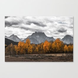 Teton Fall - Autumn Colors and Grand Tetons in Black and White Canvas Print