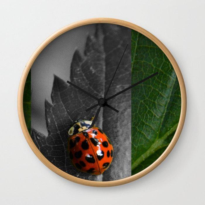 Grey Ladybug Wall Clock