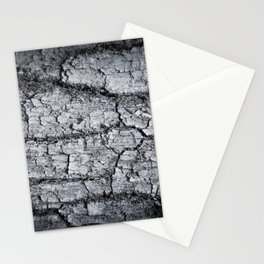 Texture - a bark of old oak with moss in grey colors Stationery Cards
