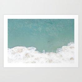 Shark From Above Art Print