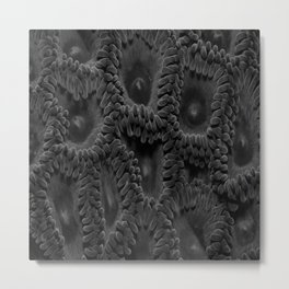 Eleven Shades of Gray Metal Print