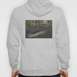 Vintage Illustration of a Hooked Brook Trout (1874) Hoody