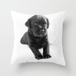Black labrador puppy Throw Pillow